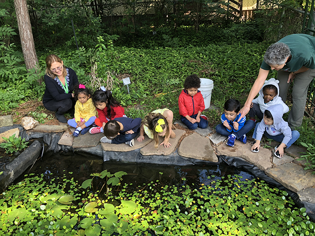 PK3 looking at Outdoor Classroom pond