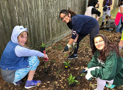 Middle School students planting flowers
